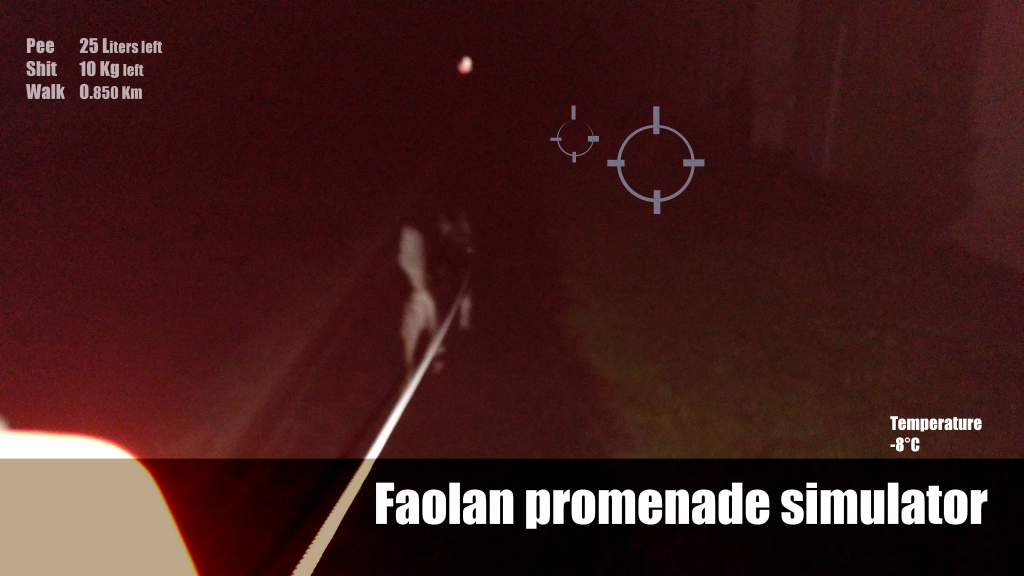 Faolan promenade sumulator