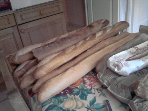 baguettes de pain francaise P080910 15.03