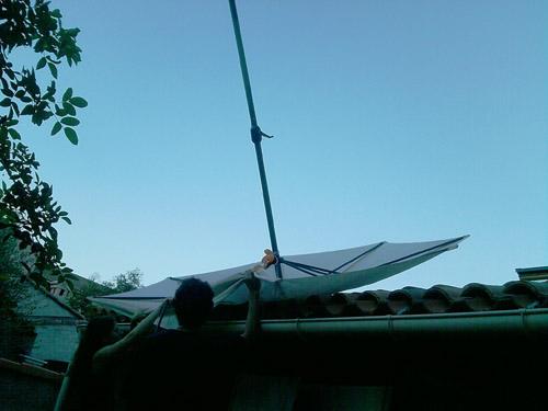 hadh parasol