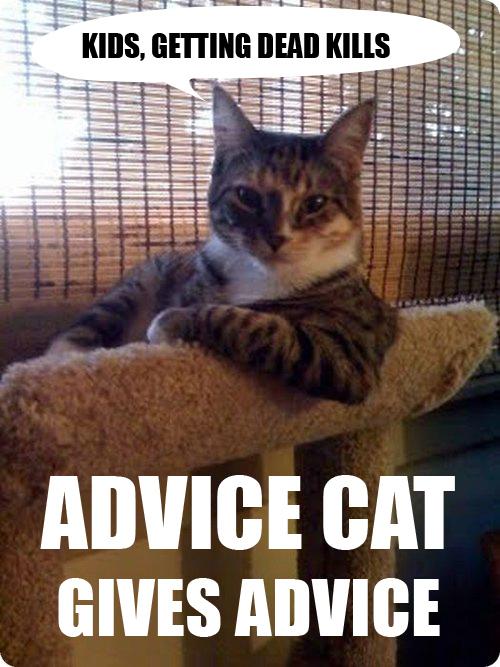 05mai 2011 - advice cat, being dead kills