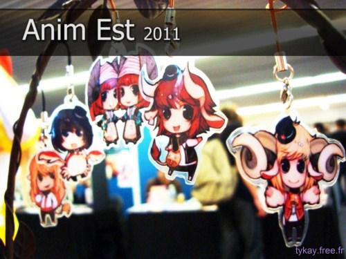 Anim Est 2011 - compte rendu