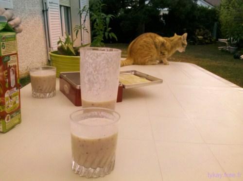 gouter jardin milk shake chat